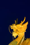 Golden dragon head with blue background Royalty Free Stock Photos