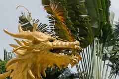 Golden dragon head Stock Photography
