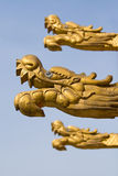 Golden dragon heads Royalty Free Stock Photo