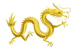 Golden Dragon lucky leader come to you with family and friends stock illustration