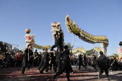 Golden Dragon Parade Royalty Free Stock Image