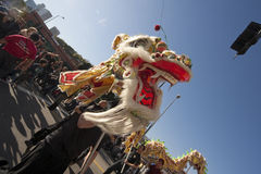 Golden Dragon Parade Dragon Dancers Stock Photography