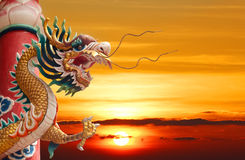 Golden dragon with red column Stock Photography