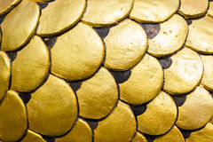 Golden dragon scale. With light Stock Photo