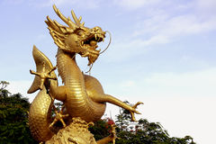 Golden dragon statue with blue sky background Royalty Free Stock Images