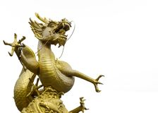 Golden Dragon Statue at The Corner on White Background with Text Copyspace Stock Images
