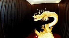Golden dragon statue. Golden Chinese dragon statue slow motion stock footage
