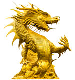 Golden dragon statue. At isolated on white background Stock Photography
