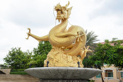 Golden dragon statue, Phuket Stock Photography