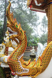 The golden dragon statue Stock Image