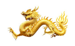 Golden dragon statue on white background Royalty Free Stock Photography