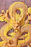 Golden dragon on the wall Stock Photography