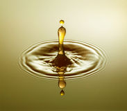 Golden Drop Stock Photography