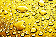 Golden drops of water Stock Photos