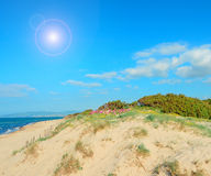 Golden dune and bright sun Stock Image