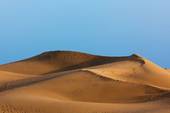 Golden dune, Maspalomas, Grand Canary Royalty Free Stock Images
