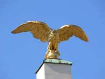 Golden eagle. Eagle placed on a column at the entrance af schoenbrunn castle in Vienna royalty free stock photo