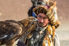 Golden Eagle Hunter came to took the prey from the bird, stroked it, gave her a piece of meat Royalty Free Stock Photos
