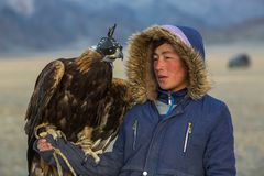 Golden Eagle Hunter, while hunting to the hare holding a golden eagles on his arms in desert mountain of Western Mongolia. SAGSAY, MONGOLIA - SEP 28, 2017 Stock Photography