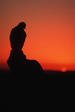 Golden eagle silhouette. Golden eagle on his roost at dawn. Photographed in Montana Royalty Free Stock Photos