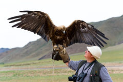 Golden Eagle with spread wings. And tourist Stock Photo