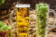 Golden ears in fresh beer and hops. On old wooden background Stock Photos
