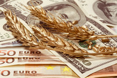 Golden ears of wheat in dollars and euro banknotes Stock Photos