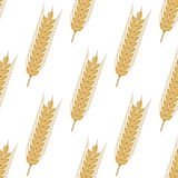 Golden ears of wheat seamless pattern Royalty Free Stock Image