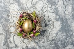 Golden easter egg in birds nest with flowers. On stone background Stock Photography