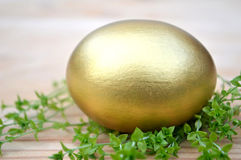 Golden Easter egg and grass Royalty Free Stock Photos