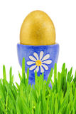Golden easter egg in green grass Royalty Free Stock Image
