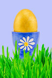 Golden easter egg in green grass Stock Image