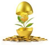 Golden  easter egg isolated Stock Image