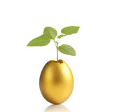 Golden easter egg isolated Royalty Free Stock Photo