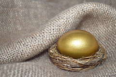 Golden Easter egg in the nest Royalty Free Stock Photography