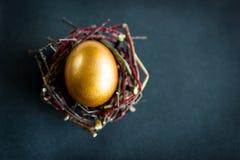 Golden easter egg in the nest on dark background.  Stock Images
