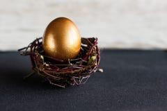 Golden easter egg in the nest on dark background Stock Images