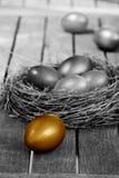 Golden easter egg in nest Royalty Free Stock Image