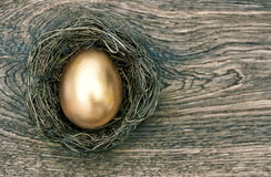 Golden easter egg in nest on wooden background Stock Images