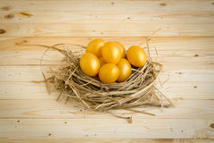 Golden Easter Egg Placed in the nest. On a wooden background Royalty Free Stock Photos