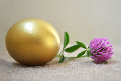 Golden Easter egg and red clover flower Stock Photos