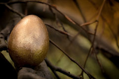 Golden easter Egg on a tree branch. One golden easter egg sitting on a tree branch with dark background Royalty Free Stock Images