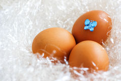 Golden Easter Eggs. And butterfly stock images