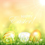 Golden Easter eggs in the grass Royalty Free Stock Photography