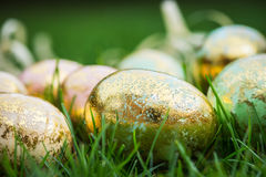 Golden Easter Eggs on green Grass Background Stock Photos