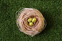 Golden easter eggs in nest Royalty Free Stock Photo