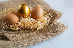 Golden easter eggs on white rustic background. The concept of uniqueness Royalty Free Stock Photo