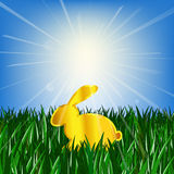 Golden Easter rabbit on green grass against the bright shiny sun with rays of light Stock Photography
