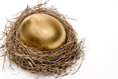 Golden Egg. A golden egg from the golden goose royalty free stock photography