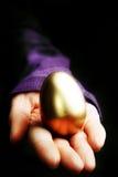 Golden egg. Hand holding a golden egg - financial concept stock photos